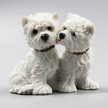 سگ وست هایلند